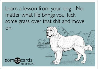 Learn a lesson from your dog - No matter what life brings you, kick some grass over that shit and move on.