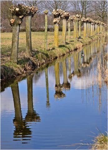 Nature in Papendrecht, Netherlands (sunny spring sunday) - a photo by hardloperjan (Jan Landman)
