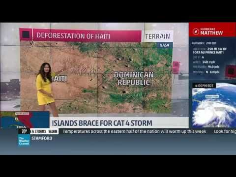 Meteorologist forced to apologize after 'Haitian kids eat trees' comment - Haiti Sentinel Weather Channel Meteorologist Jen Delgado was forced to issue an on-air apology after asserting, during a forecast on Hurricane Matthew, Monday, that Haiti was deforested partly because hungry children eat trees. [VIDEO]