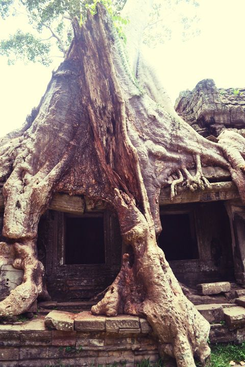 Siem Reap, Cambodia- the lost temples of Angkor.  www.kirstencaptures.com