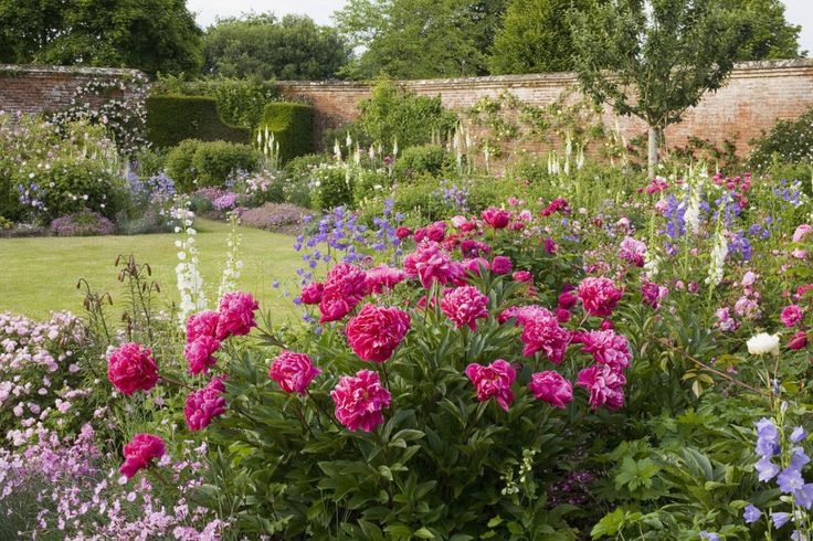 The signature of a cottage-style garden is an abundance of old-fashioned, petal-heavy flowers, like roses, bellflowers, and peonies (pictured above). Bonus: Your garden will not only look beautiful, it will smell amazing, too.