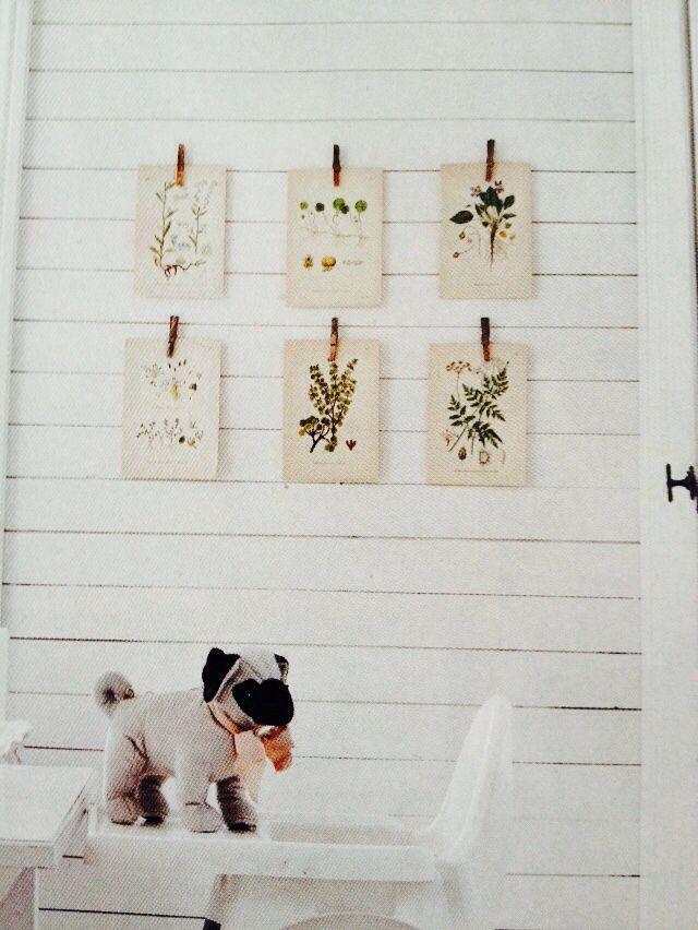 Snygg upphängning av blomsterposters