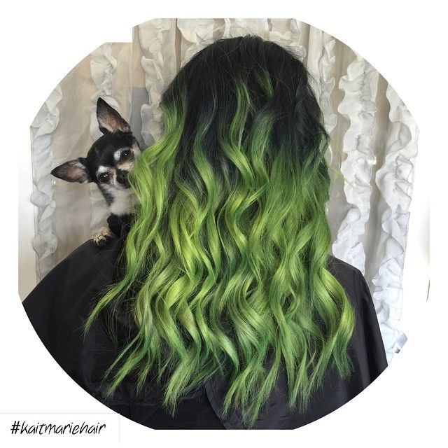 Can I please have Jenna Marbles hair please?