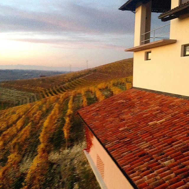 #vineyards of #barbaresco #langhe #winelover #discover #winemaker #winetasting #solocosebelle #italy #pic #piemonte #beauty #enjoylife #enjoy #memories of #travel #traveling #travelgram #brunorocca
