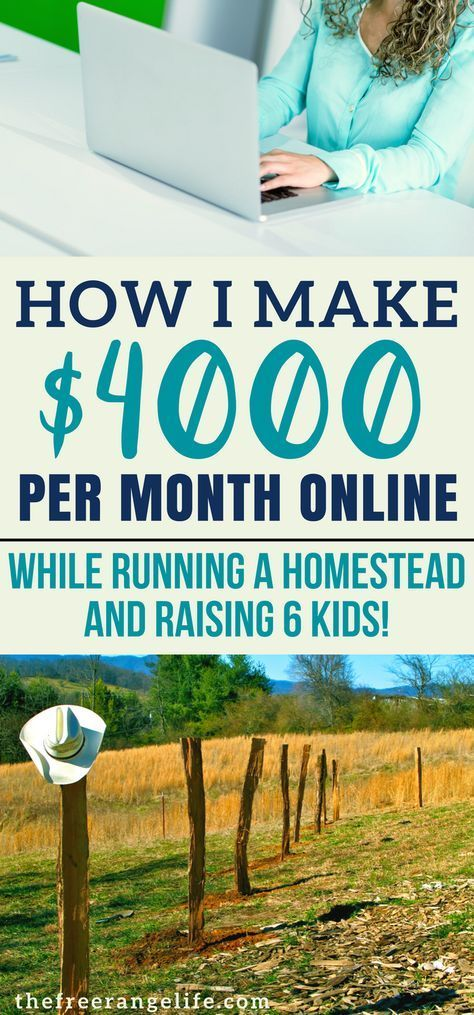 The Surprising Way We Make Money from Our Homestead Online! – Susanna Sanchez