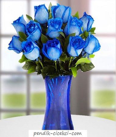 vazo-mavi-gul,Tıkla Hemen Adrese Gönder.. pendik-cicekci.com