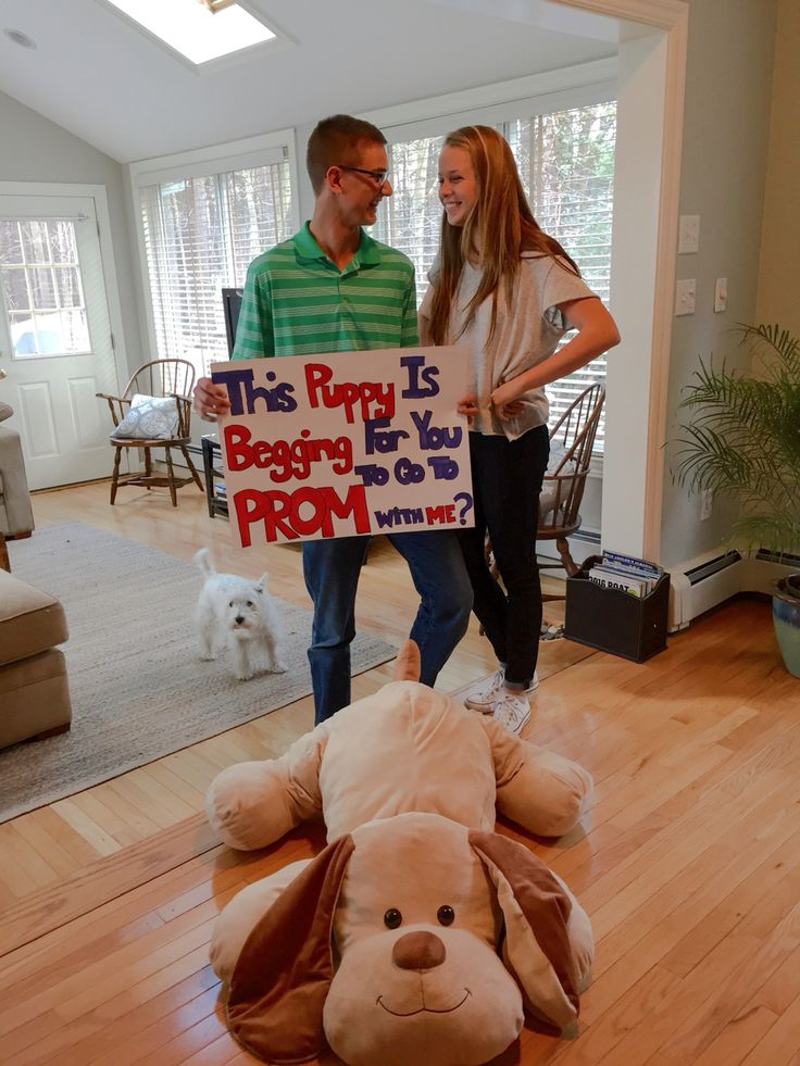 Adorable promposal                                                                                                                                                                                 More