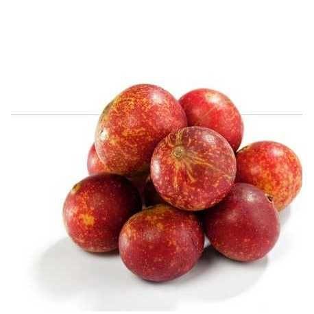Θωρακίζοντας τον οργανισμό με την πλουσιότερη πηγή βιταμίνης C! - Βιολογικά ωμά μούρα κάμου κάμου σκόνη - Organic raw camu camu berry powder