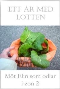 Ett år med Lotten - Köksträdgården