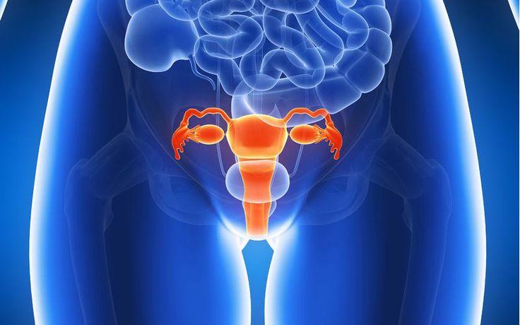 Get Rid Of Bacterial Vaginosis