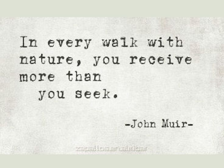 In every walk with nature, you receive more than you seek. Inspirational Quote