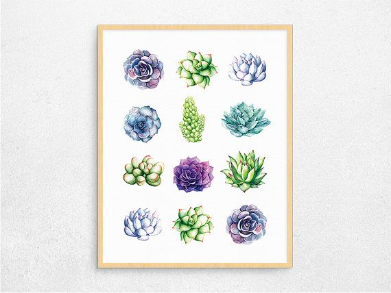 #succulents #homedecor by Paper Island