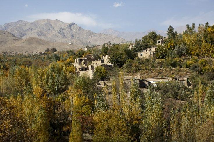 Photo essay: Filmmaking on the streets of Kabul -  aspen trees outside of Kabul.