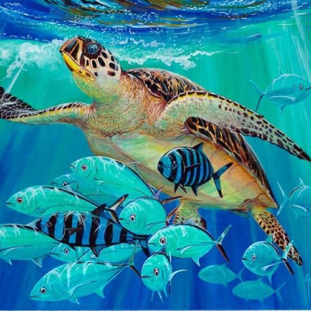 212 best sea turtle love images on pinterest sea turtles for Turtle fish paint
