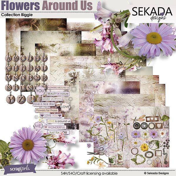 Flowers Around Us Collection Biggie