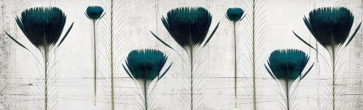 pluma de pavo | Inkiostro Bianco | Collezioni | Carta da parati vinilica e fibra di vetro | Inkiostro Bianco