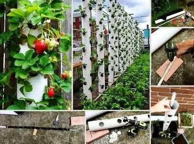 Vertical Strawberry Tube Planter --- great way to plant strawberries this summer!