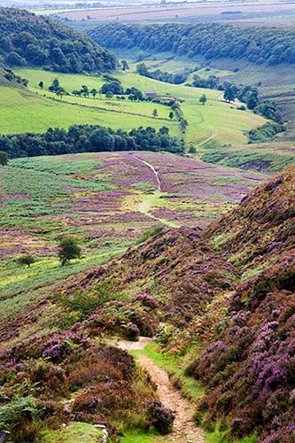Hole of Horcum North York Moors Yorkshire You pass this on the way to Whitby, much more beautiful when you are there.
