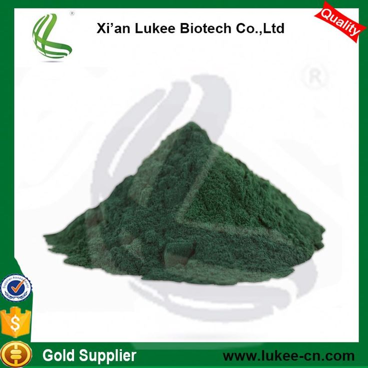 Top Quality Algaes Spirulina powder with High Protein for buyers of spirulina