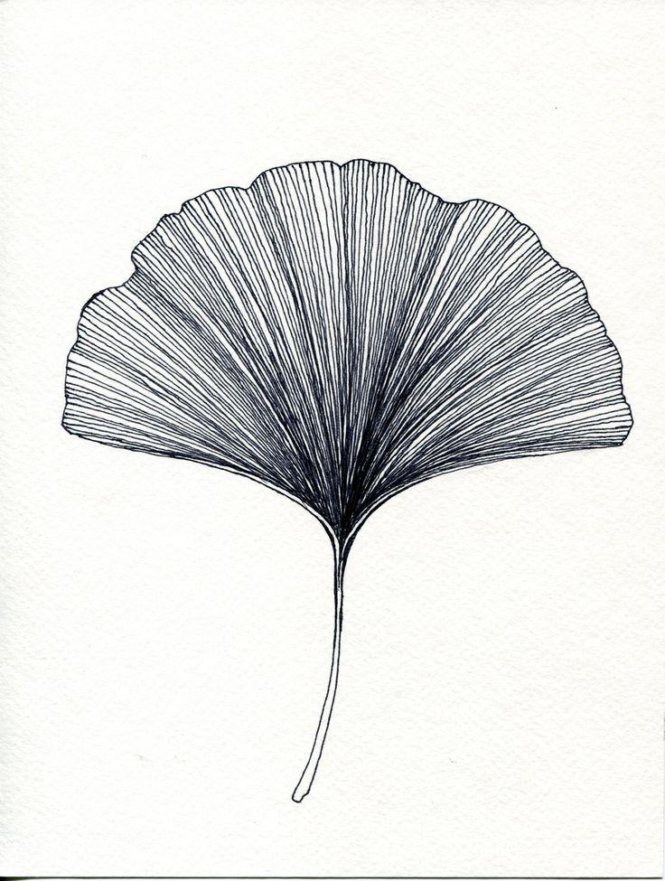 Gingko Leaf Print of original Black or Green Pen and Ink Drawing. $22.00, via Etsy.