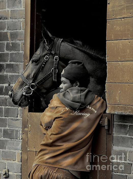 Groomed Race Horse