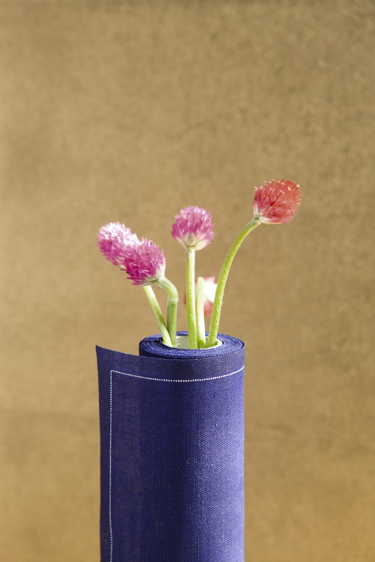 MYdrap y las flores / MYdrap and the flowers