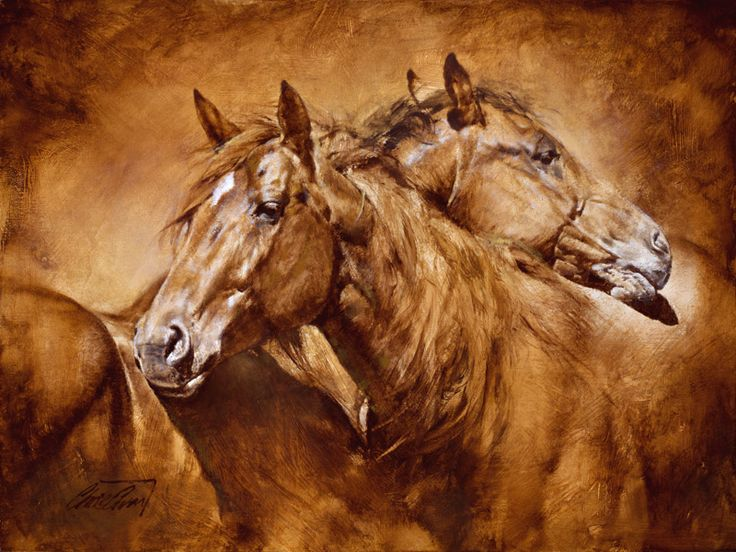 Chris Owen - Comfort - Signed/Numbered Horse Print
