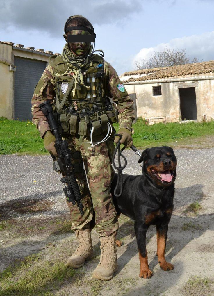 Esercito Italiano - Unità cinofila -Afghanistan