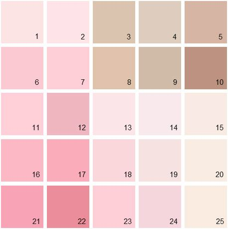 Benjamin Moore Pink House Paint Colors - Palette 05