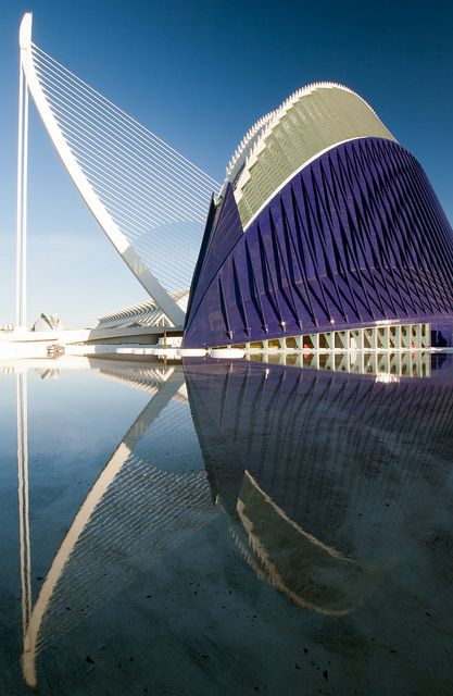 El Agora arena and El Puente de l'Assut de l'Or suspension bridge reflected in a shallow pool in Valencia's City of Arts and Sciences.