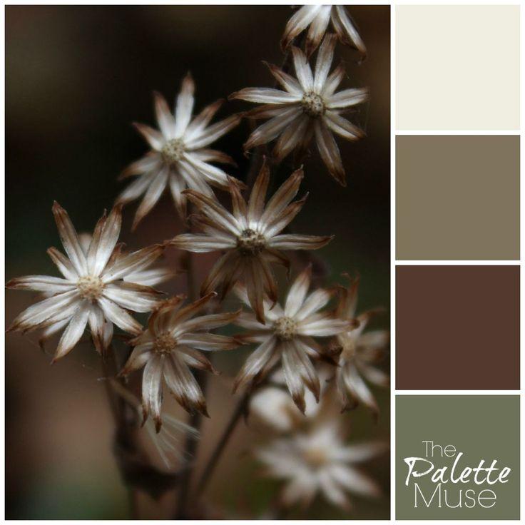 88 besten The Palette Muse Color Palettes Bilder auf Pinterest ...