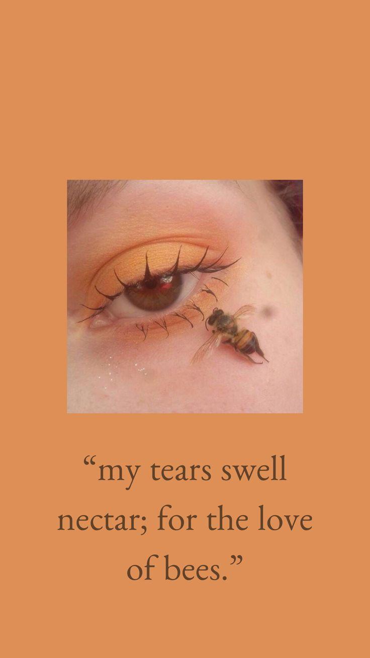 #yellow #honey #sunflower #bee #nectar #makeup #eyeshadow #poetry #brown #orange #beautiful #canva #lockscreen #wallpaper #iphone #aesthetic <a class=