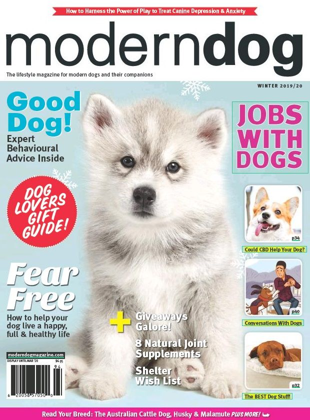 Download The Latest Magazine And Newspapers Using Press Reader Modern Dog Newspapers Dog Lovers