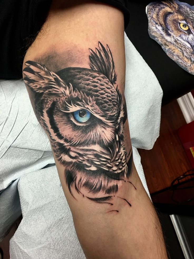 Great Horned Owl Black And Grey Tattoo Best 25+ Owl sk...