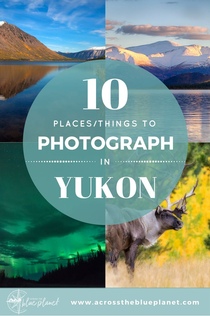 10 Places/Things to Photograph in Yukon.  #yukon #travelyukon #travelcanada #northernlights #photography
