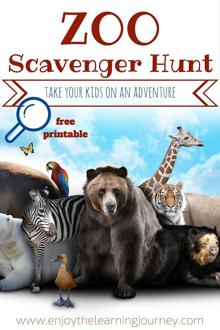 Take your kids on an adventure with a zoo scavenger hunt.  FREE printable!
