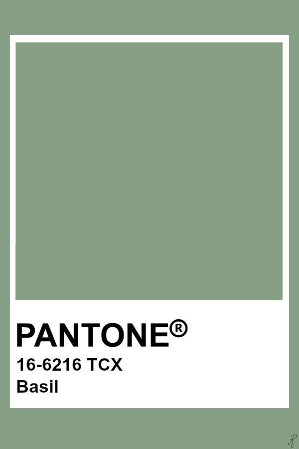 pantone basil in 2019 pantone green pantone color pantone