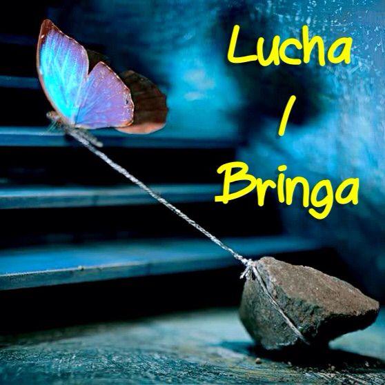 Fight | Lucha pa loke bo ke logra -Fight for what you want to achieve! Visit: henkyspapiamento.com #papiamentu #papiaments #papiamento #language #aruba #bonaire #curaçao #caribbean #fight #strijden #vechten #pelear #luchar #lutar #brigar