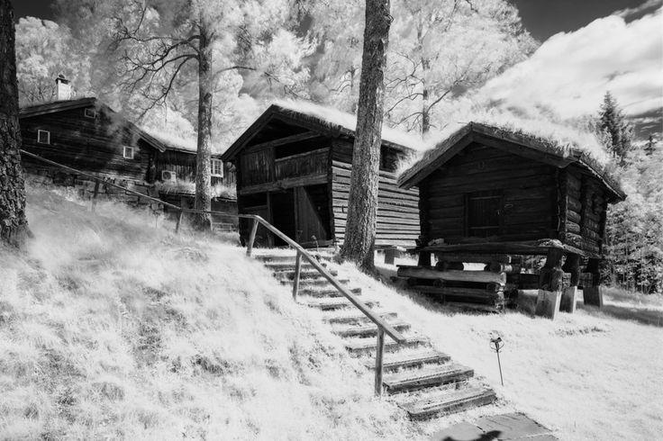 - Cabins -