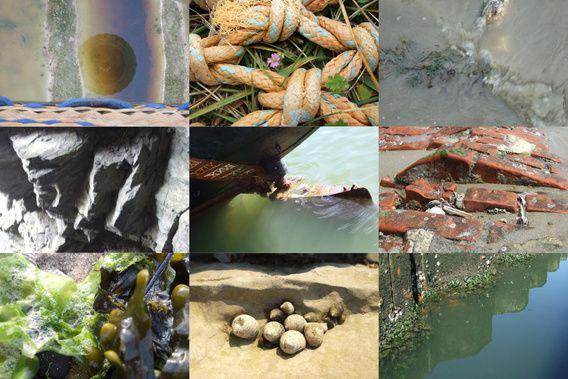 compositie van foto's die ook afzonderlijk te bestellen zijn via http://jokebot.exto.nl