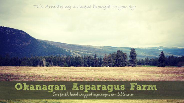 A wonderful little farm in Armstrong, BC. They grow the best asparagus around.  www.okasparagus.com