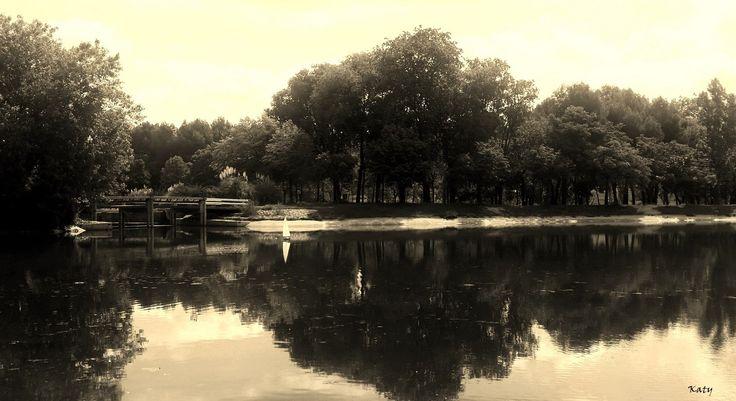Parque Tierno Galván