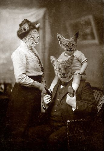 """Bob's Family"" by Martine Roch. - cat head family with little cat kid sitting on papa cat's shoulders"