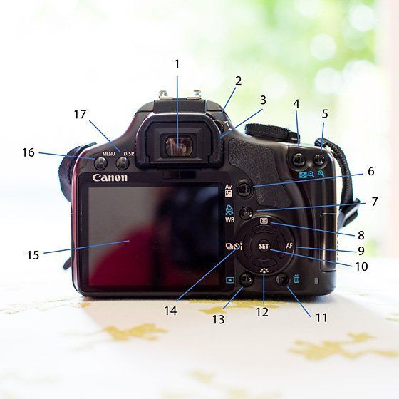 Overwrought Photography Gear Portraits Dslrofficial