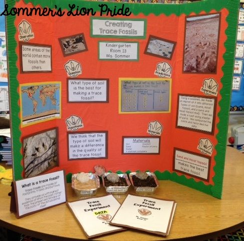 Kindergarten science projects at home