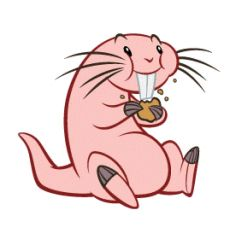 "Kim Possible Fact - Rufus is named after Ron's imaginary friend of the same name. Also, Rufus means ""red-haired"", which is weird considering Rufus is a naked mole rat."
