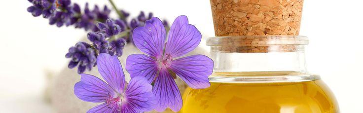 #lavanta #lavantayağı #lavantaçiçeği #çiçekler #bitkiselyağlar #bitkiçayları  Lavanta  Lavanta; çalı görünümlü çok yıllık bir bitki olan lavanta ince uzun yaprakları gümüşi, çiçekleri ise menekşe renklidir. Çiçeklerin ferahlatıcı hoş bir kokusu vardır. http://lavantacayifaydalari.blogspot.com.tr/2015/03/lavanta-cicegi.html
