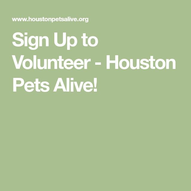 Sign Up to Volunteer - Houston Pets Alive!