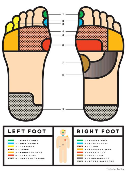 Foot reflexology infographic by Erin Jang.