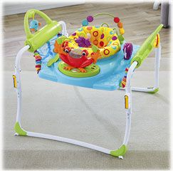 869bdc3e5 First Steps Jumperoo™